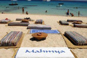 Mahmya island 70 $