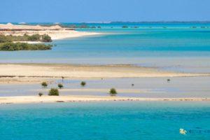 Hamata ( Qullan ) island 50 $