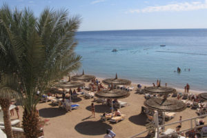 Sharm El Naga sea trip 40 $