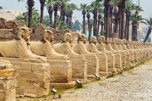Luxor-Dendera 75 $